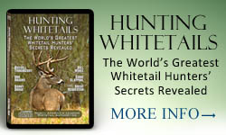 Hunting Whitetails CD